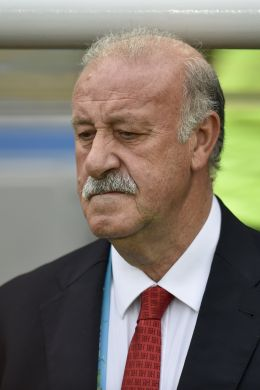 Vicente del Bosque - CP DC Press/Shutterstock.com