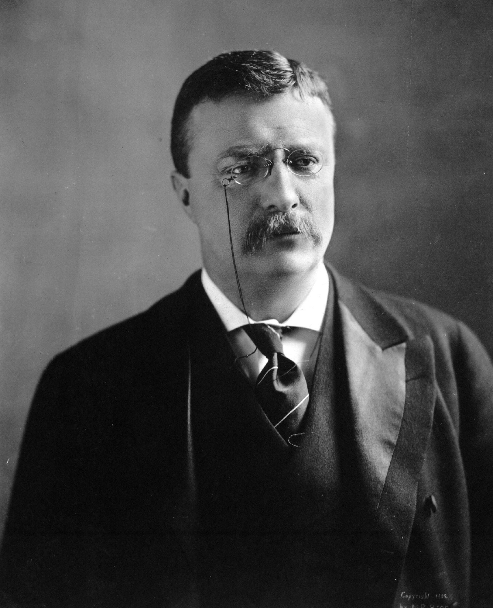Theodore Roosevelt | zitate.eu